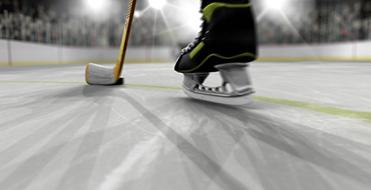 """""""Hockey"""" Flex ID"""